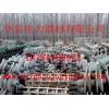 回收高压悬垂绝缘子 回收防污悬垂瓶 回收绝缘子串的厂家